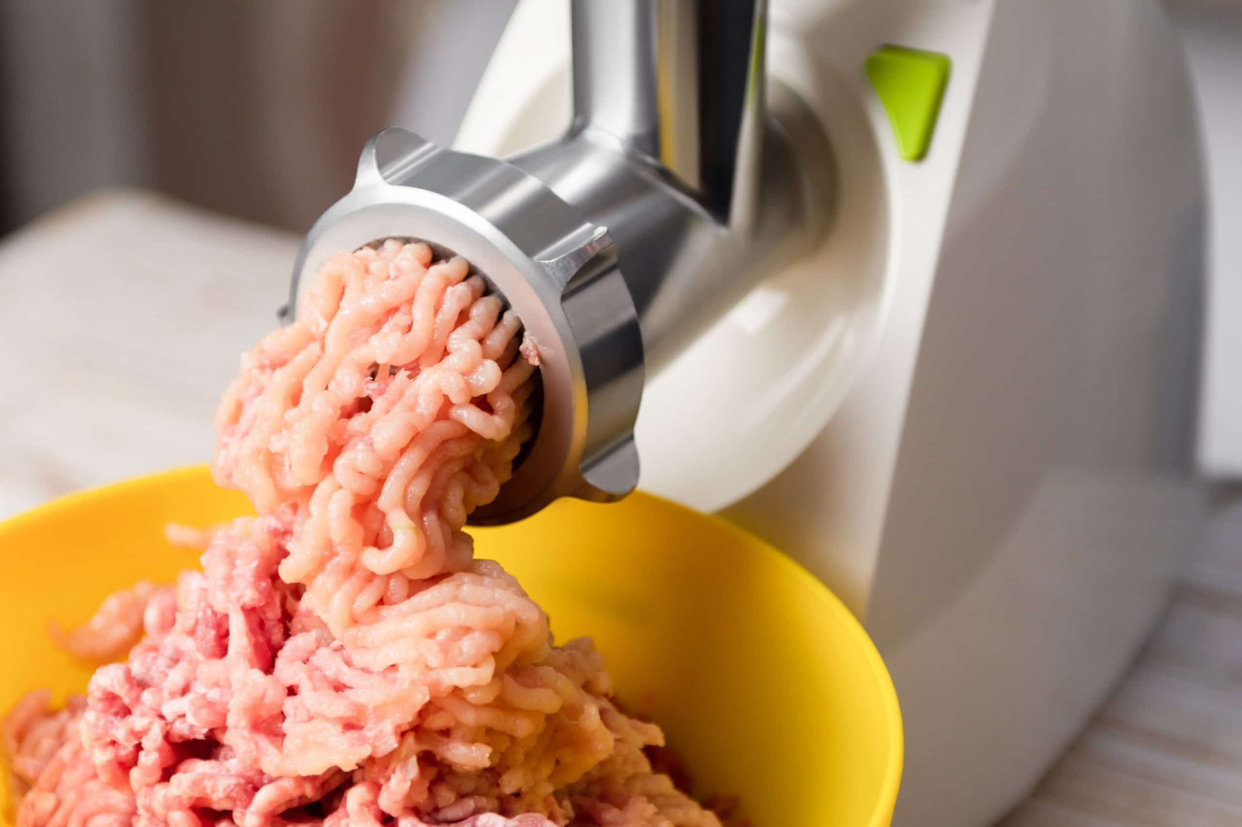best meat grinder for bones