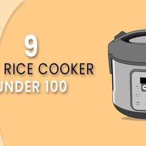 Best rice cooker under 100